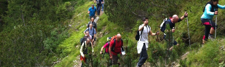 Nordic walking in Gressoney
